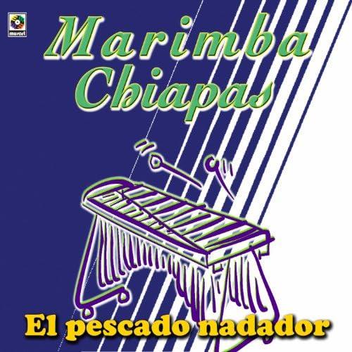 Marimba Chiapas
