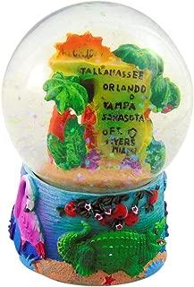 Best florida snow globe souvenir Reviews