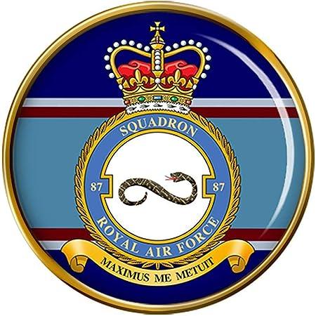 RAF Pin Badge 87 Squadron