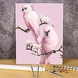 Juego de pintura de animales de aves por números pinturas al óleo 40x50cm pintura por números decoración para niños arte al por mayor Pintura-por-números