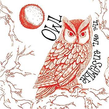 Moore: Owl