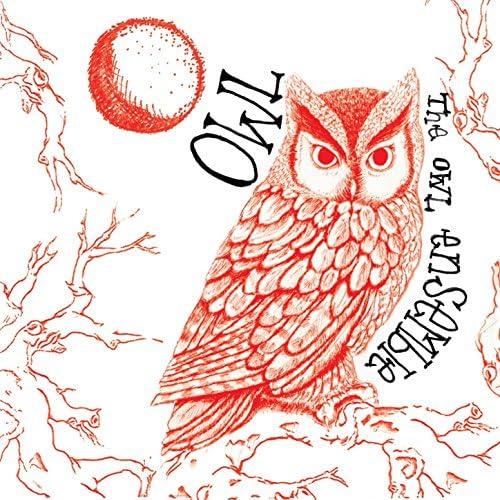 The Owl Ensemble