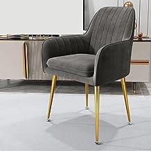 ZNBJJWCP Armchairs Living Room Furniture Sofa Chair Nordic Modern Simplicity Dressing Chair Plush Light Bedroom Lounge Cha...