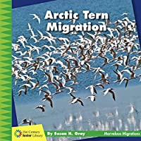 Arctic Tern Migration (21st Century Junior Library: Marvelous Migrations)