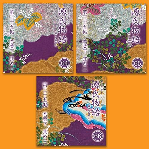 『源氏物語 瀬戸内寂聴 訳 3本セット(二十二)』のカバーアート