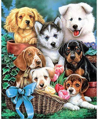 none_branded digitale olieverfschilderij om te knutselen, een hondenmand, wanddecoratie, cadeau, decoratie, hobby, handbeschilderd, modern, 40 x 50 cm