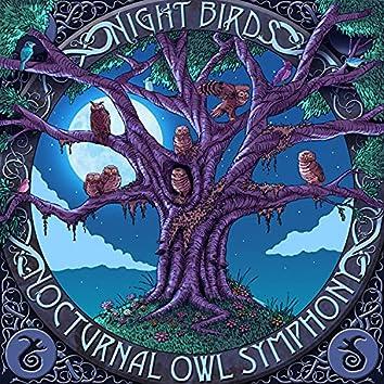 Nocturnal Owl Symphony