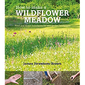 How to Make a Wildflower Meadow: Tried-And-Tested Techniques That Really Work