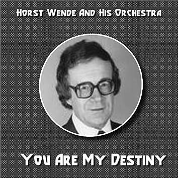 You Are My Destiny (Slow - Rock)
