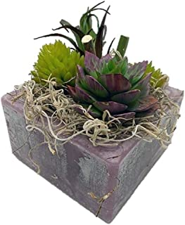 Habersham Candle Co. Purple/Green Agave Succulent GEO Cube Candle