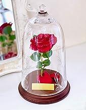 美女と野獣 バラ 天然ダイヤ付き ガラスドーム 真実の愛の贈り物 (レッド(プレート付))納期確認店舗まで