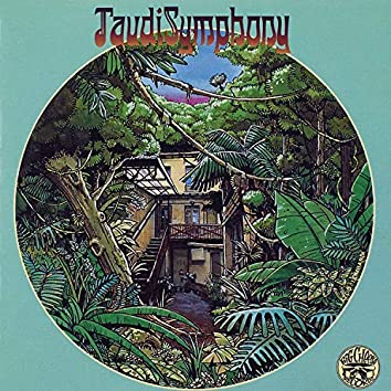 Taudi Symphony