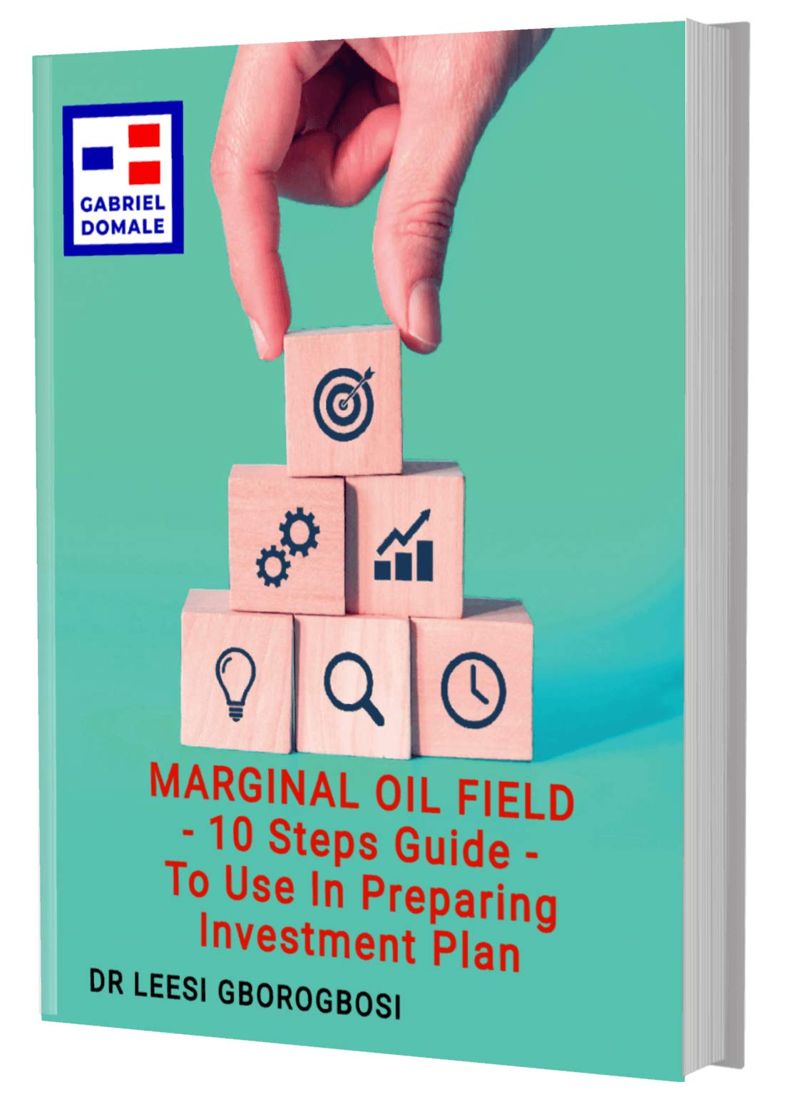 MARGINAL OIL FIELD - 10 Steps Guide - To Use In Preparing Investment Plan (Marginal Field Book 1)