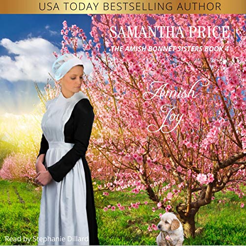 Amish Joy  By  cover art