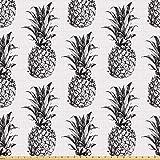 ABAKUHAUS Ananas ausdehnbar mit Elestan für