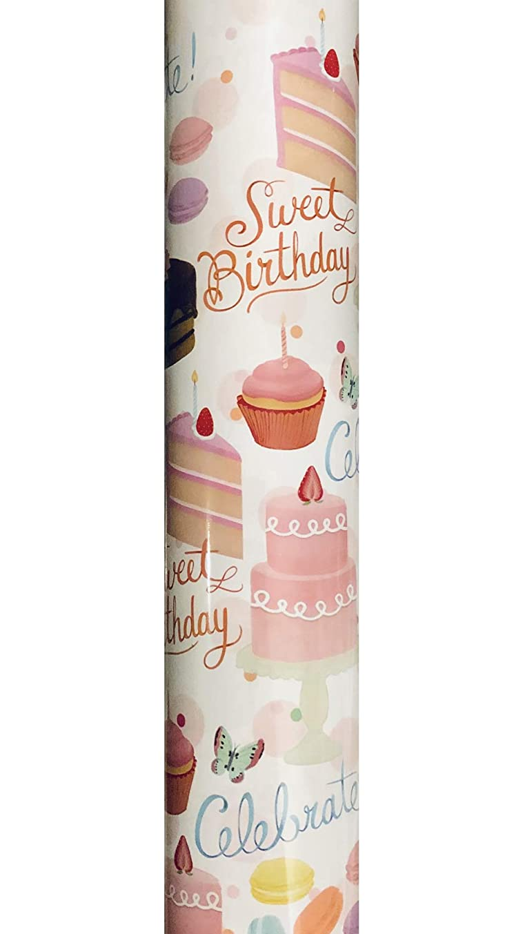 Molly & Rex Heavyweight Continuous Gift Wrap Paper Roll Wrapping Paper ~ Sweet Birthday 65646