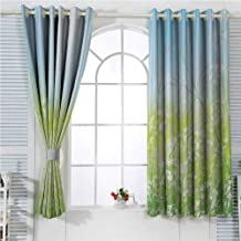 Apartment Decor Collection Eclipse Blackout Curtains Floral Field Meadow Fresh Grass Weeds Plant Herbs on The Earth with Bright Sky Graphic Patio Door Curtains Living Room Decor W107 x L96 Inch Blue