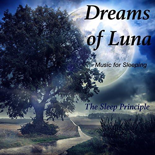 The Sleep Principle