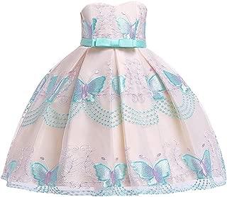 Jiatwhfhsa Kids Baby Girls Striped Lace Tulle Tutu Dress Princess Party Wedding Gown 2-11