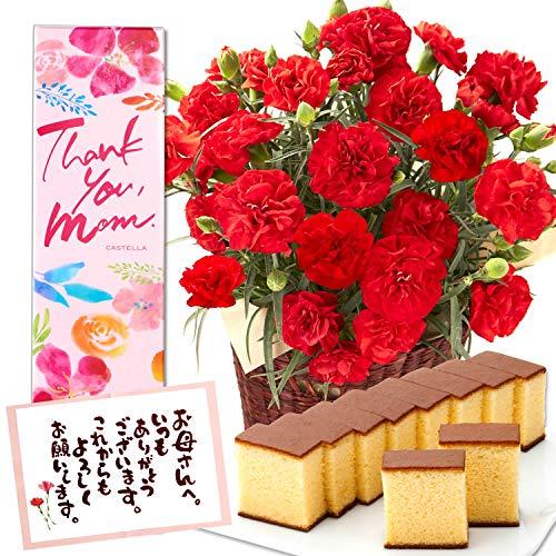 長崎心泉堂 母の日のプレゼント 花とお菓子 カーネーション 鉢植え スイーツ ギフト セット 4号 レッド 長崎カステラ MD12