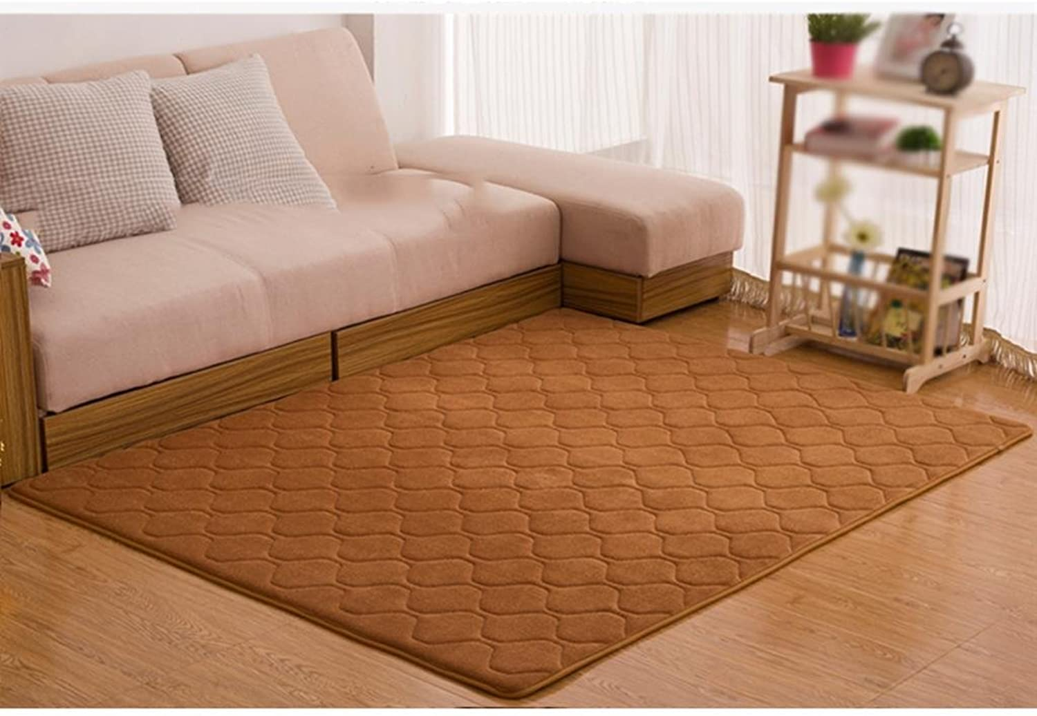 DYI carpets, bedroom, living room, coral, velvet mats, nonslip entrance mat