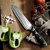 PAUDIN Damast Santokumesser 17cm - Profi Küchenmesser Messer aus Damaststahl mit Micarta-Griff - 8
