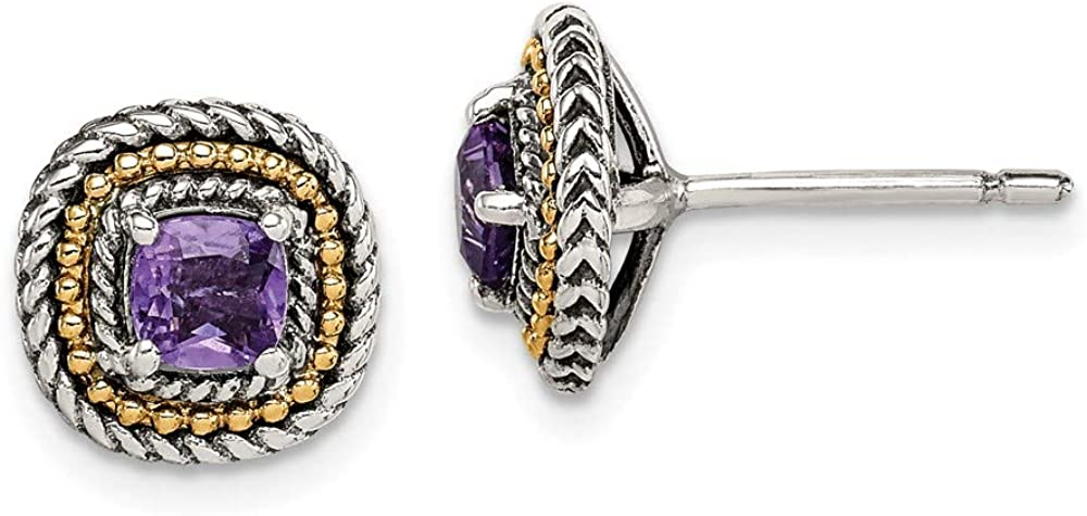 Choice Sterling Silver and Dedication 14k Yellow Accent Square Gold Post Amethyst