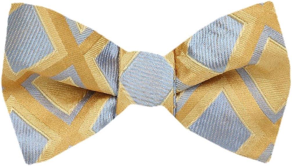 FBTZ-1311 - Men's Silk Self Tie Bowtie Tie Yourself Bow Ties