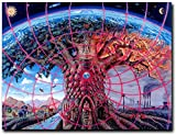 Zzjart HD Printed Oil Paintings Home Wall Decor Art on Canvas,Trippy Alex Grey, Psychedelic 5size#466 (Unframed,20x27inch)