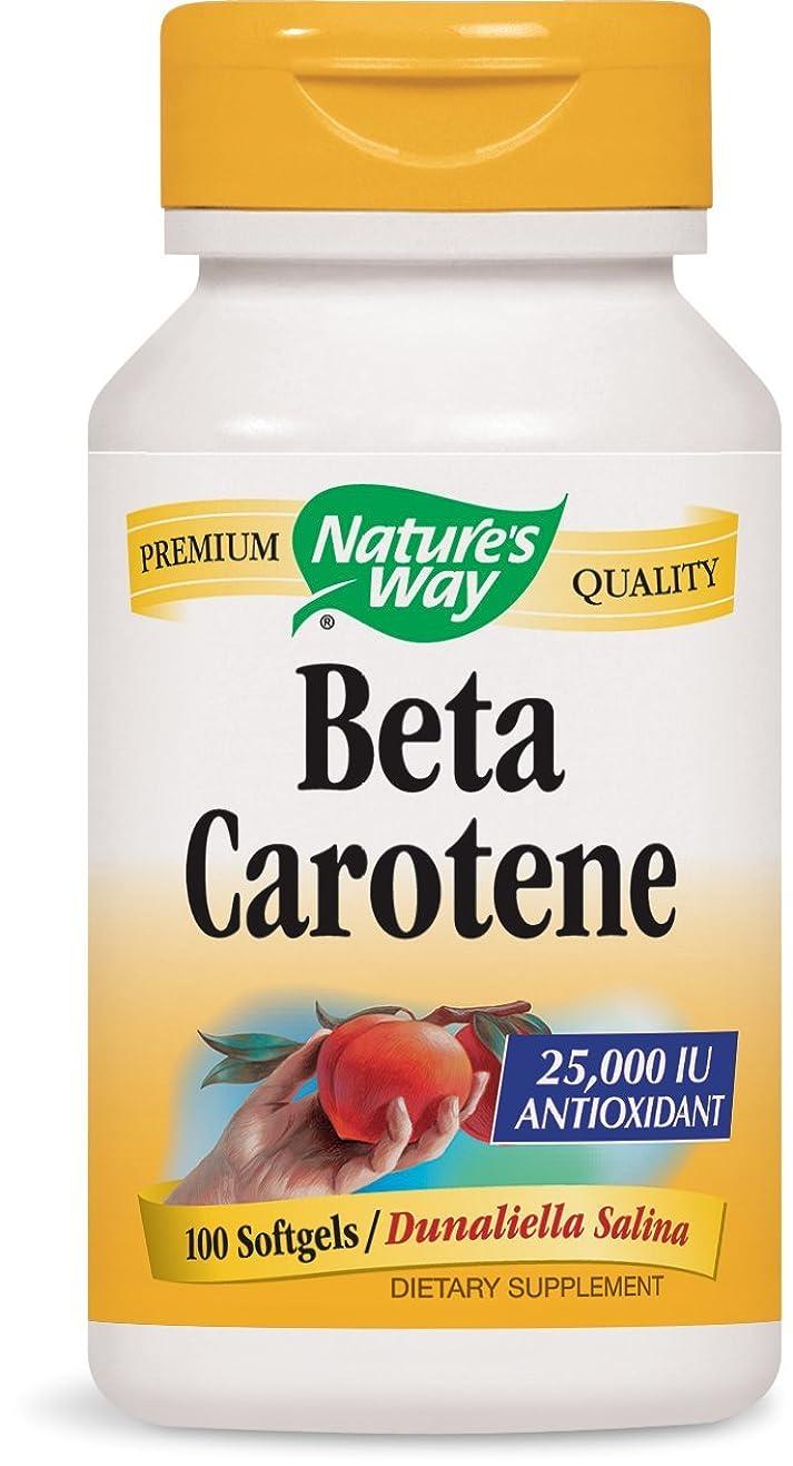 おしゃれじゃない司令官強要海外直送品 Nature's Way Beta Carotene, 100 Sftgls