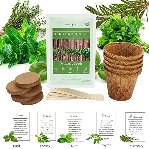Environet Herb Garden Kit. Seed Starter Kit Indoor. Grow 5 Different Herbs - Basil, Mint, Parsley, Thyme and Rosemary from Organic Seeds at Home. Gardening and Home Decoration Gifts