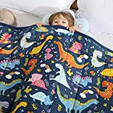 HAOWANER Minky Kids Weighted Blanket 7lbs 41 x 60 inches, Soft Kids and Toddler Comforter Great for Calming and Sleeping, Child Bed Size, Dinosaur-Blue