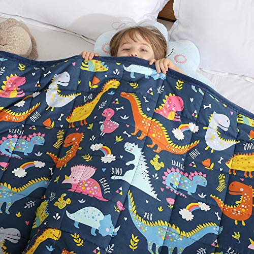 Haowaner Minky Kids Weighted Blanket 7lbs 41 x 60 inches, Soft Kids...