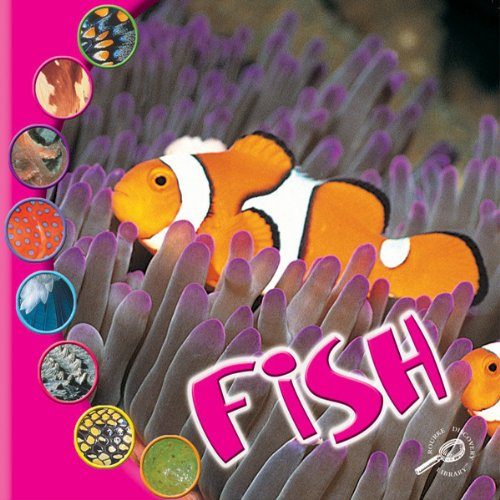 Fish audiobook cover art