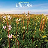 Illinois Wild & Scenic 2021 12 x 12 Inch Monthly Square Wall Calendar, USA United States of America Midwest State Nature