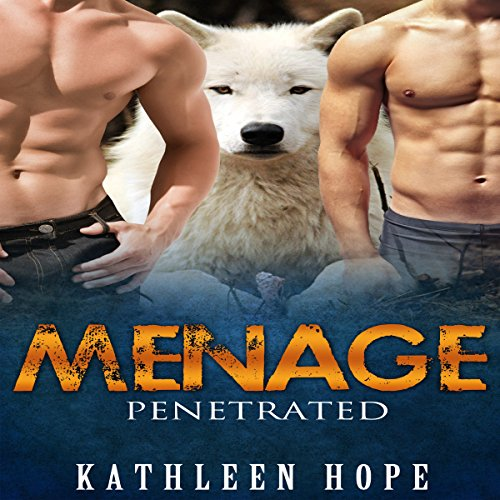 Menage: Penetrated cover art