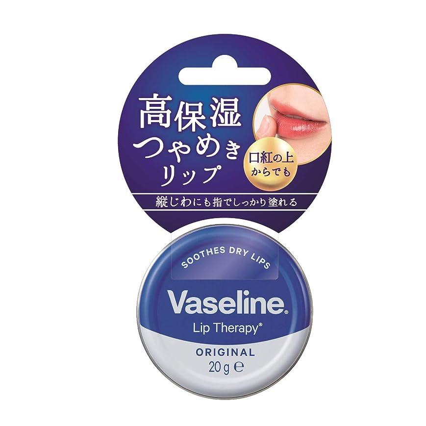 育成乳製品消化ヴァセリン リップ モイストシャイン オリジナル 20g