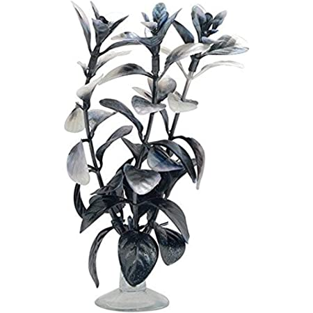Black and White Tank Background Poster Backdrop Decoration Paper Foliage Plant in Monochromatic Style with Curvy Sprigs Full of Leaves Underwater Backdrop Image Decor Black White L48 X H18 Inch