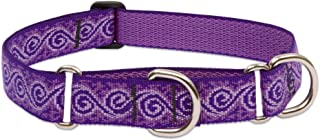 """LupinePet Originals 1"""" Jelly Roll 15-22"""" Martingale Collar for Medium and Larger Dogs"""