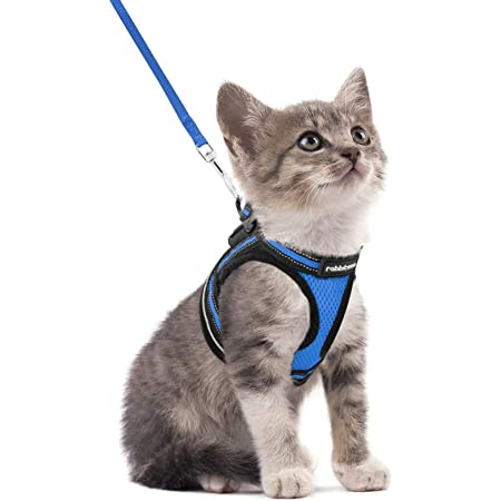 """rabbitgoo Cat Harness and Leash Set for Walking Escape Proof, Adjustable Soft Kittens Vest with Reflective Strip for Cats, Comfortable Outdoor Vest, Blue, S (Chest:9.0""""-12.0"""")"""