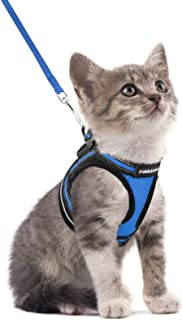 """rabbitgoo Cat Harness and Leash Set for Walking Escape Proof, Adjustable Soft Kittens Vest with Reflective Strip for Cats, Step-in Comfortable Outdoor Vest, Blue, S (Chest:9.0""""-12.0"""")"""