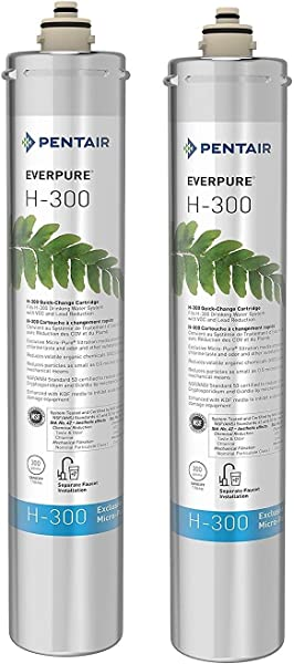Everpure H 300 Water Filter Replacement Cartridge EV9270 72 Or EV9270 71 Pack Of 2