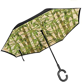 Big Straight Umbrella, with C-Shaped Handle, Reverse Folding Bamboo House Decor Collection Modern Illustration with Japanese Bamboo Reeds on a Vintage Background Art Green Cream