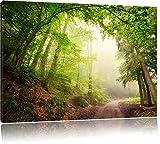 Sonnenstrahlen Waldweg, Bild auf Leinwand, XXL riesige Bilder fertig gerahmt mit Keilrahmen, Kunstdruck auf Wandbild mit Rahmen, günstiger als Gemälde oder Ölbild, kein Poster oder Plakat, Format:60x40 cm