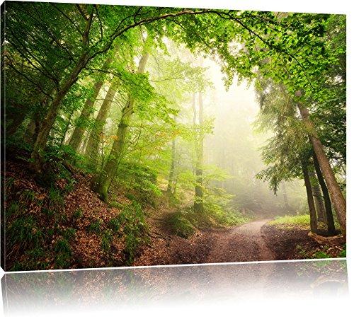 Sonnenstrahlen Waldweg, Bild auf Leinwand, XXL riesige Bilder fertig gerahmt mit Keilrahmen, Kunstdruck auf Wandbild mit Rahmen, günstiger als Gemälde oder Ölbild, kein Poster oder Plakat, Format:100x70 cm