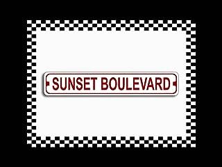 Sunset Boulevard Novelty Metal Beach Street Sign 3x18