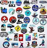45Pcs Ski Sticker Snowboard Helmet Decals Outdoor Stickers for Ski Helmets Goggles Sticker Car Truck Van Wall Cup