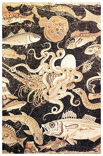 Octopus Fighting a Lobster Poster, Mosaic, House of Pompeii, Naples Italy