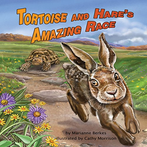 Tortoise and Hare's Amazing Race  Audiolibri