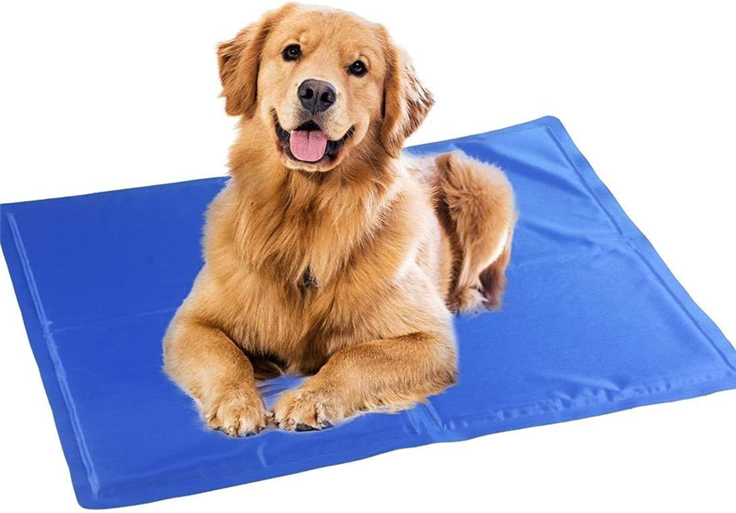IANXI Home Dog Cat Ice Mat Bed Give Pet a Cool Summer Easy to Clean Durable Comfortable Resistant Scratch and Bite XS 40  30cm for Cat Dog